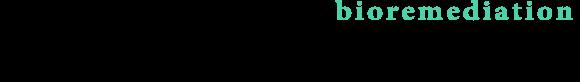 株式会社ゲイト